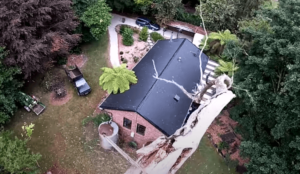 tree removal, tree lopper, melbournes best tree removal companies
